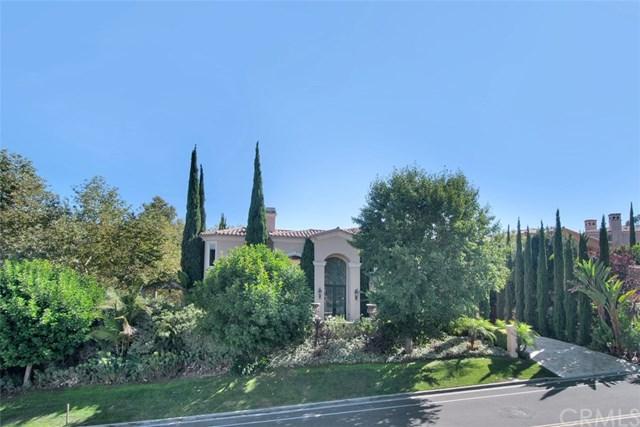 30312 Marbella Vista, San Juan Capistrano, CA 92675 (#OC18226152) :: Brad Feldman Group