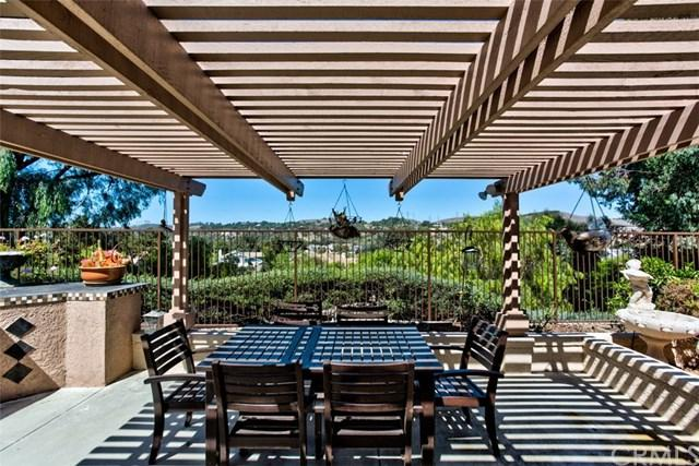 28931 Via Hacienda, San Juan Capistrano, CA 92675 (#OC18226627) :: Brad Feldman Group