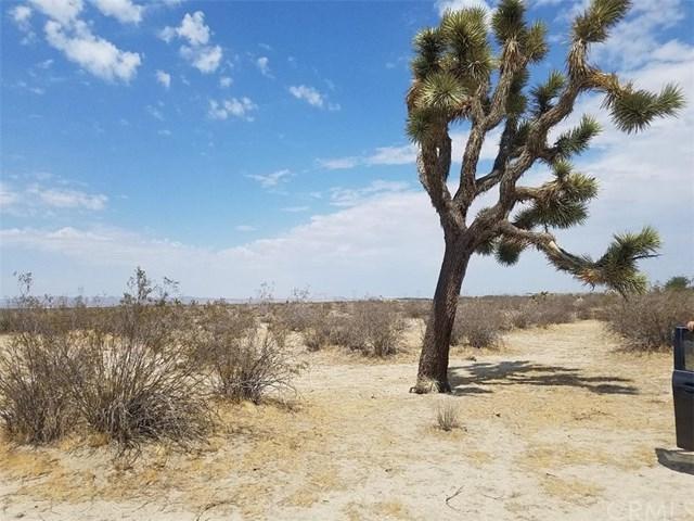 0 Mojave Rd, Phelan, CA 92371 (#EV18227930) :: The Ashley Cooper Team