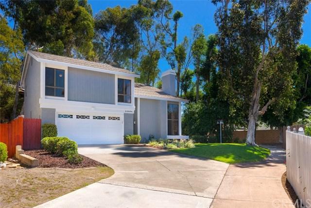 25384 Juniper Drive, Mission Viejo, CA 92691 (#OC18227111) :: Fred Sed Group