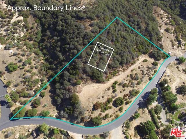 2220 E Little Las Flores Road, Topanga, CA 90290 (#18386020) :: The Laffins Real Estate Team
