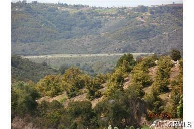 646 Rice Canyon Road, Fallbrook, CA 92028 (#SW18229763) :: RE/MAX Empire Properties