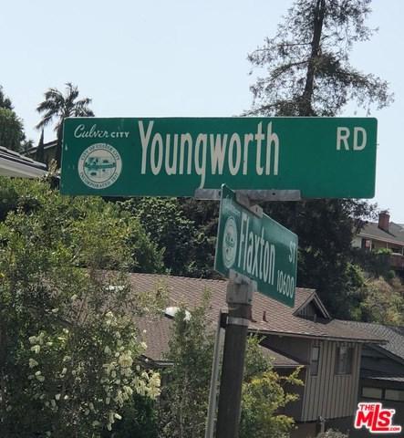 0 Youngworth, Culver City, CA 90230 (#18387102) :: Team Tami