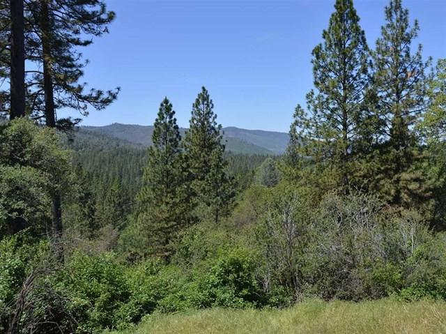 Cedar Gulch Lane, Midpines, CA 95345 (#180053241) :: Fred Sed Group