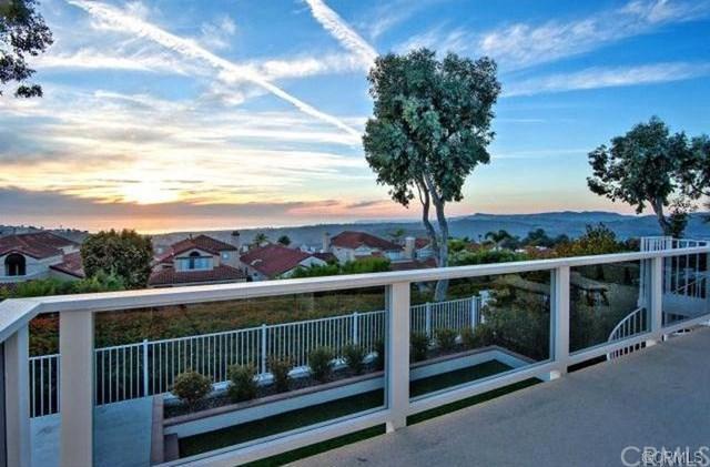1307 Avenida De Verdes, San Clemente, CA 92672 (#OC18234259) :: Z Team OC Real Estate