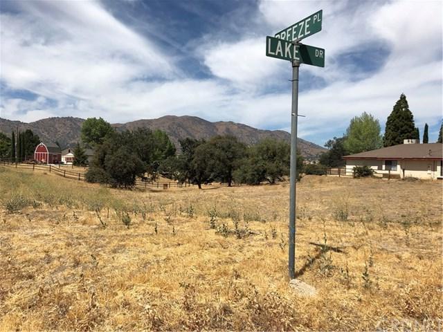 22641 Lake Drive, Tehachapi, CA 93561 (#SR18238176) :: The Laffins Real Estate Team