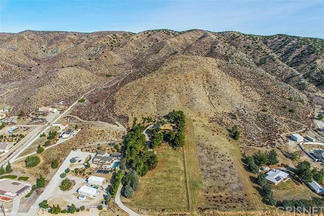 82 Vac/Northside Dr/Vic 90th Stw, Leona Valley, CA 93551 (#SR18239878) :: The Laffins Real Estate Team