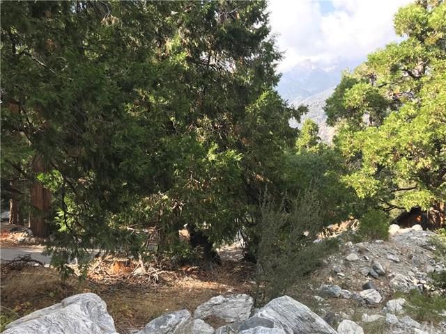 0 Spring Drive, Forest Falls, CA 92339 (#EV18241903) :: Millman Team