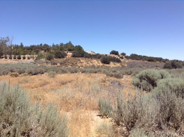 0 Forestry Road, Oak Hills, CA 92344 (#IV18243657) :: The Laffins Real Estate Team