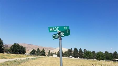 51 Coulter Pine Street, Tehachapi, CA 93561 (#MB18248411) :: RE/MAX Parkside Real Estate
