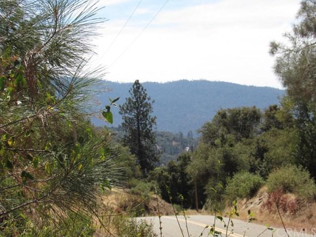 0-39.8 AC Jean Road E, Oakhurst, CA 93644 (#FR18248582) :: Millman Team