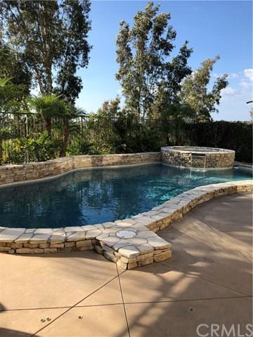 21 Scarlet Maple Drive, Ladera Ranch, CA 92694 (#OC18249308) :: Pam Spadafore & Associates