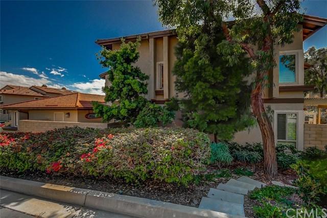 33701 Surfside Drive #35, Dana Point, CA 92629 (#OC18249595) :: Z Team OC Real Estate