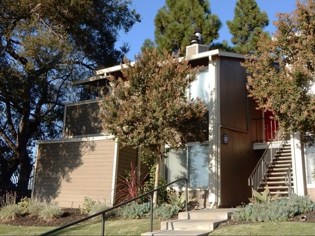 2664 Senter Road #220, San Jose, CA 95111 (#ML81728091) :: Fred Sed Group