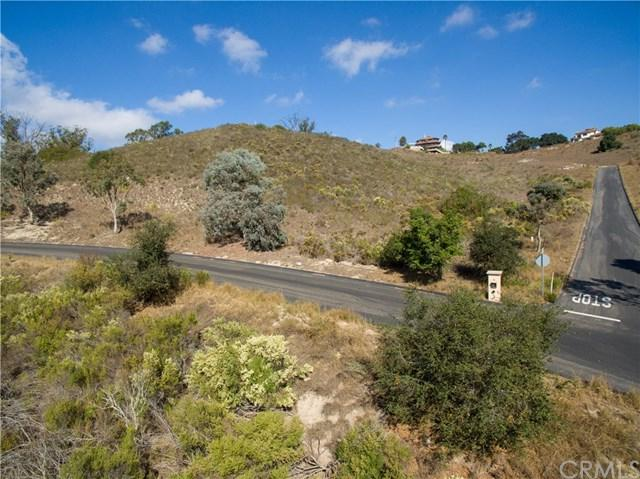 1190 Montecito Ridge Drive, Arroyo Grande, CA 93420 (#SP18251627) :: Pismo Beach Homes Team