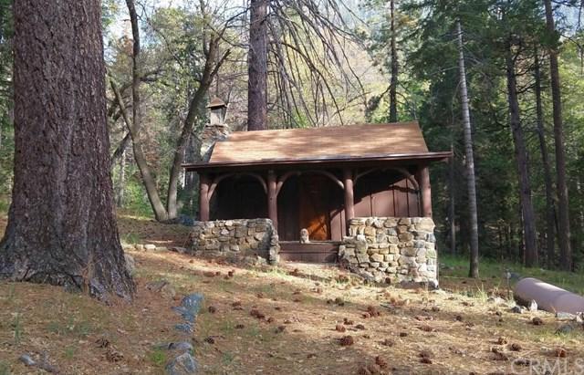 49 Round Cienega, Angelus Oaks, CA 92305 (#EV18255281) :: Millman Team