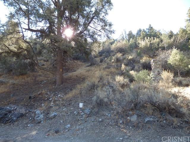 0 Valley Trail, Frazier Park, CA 93225 (#SR18255282) :: Group 46:10 Central Coast