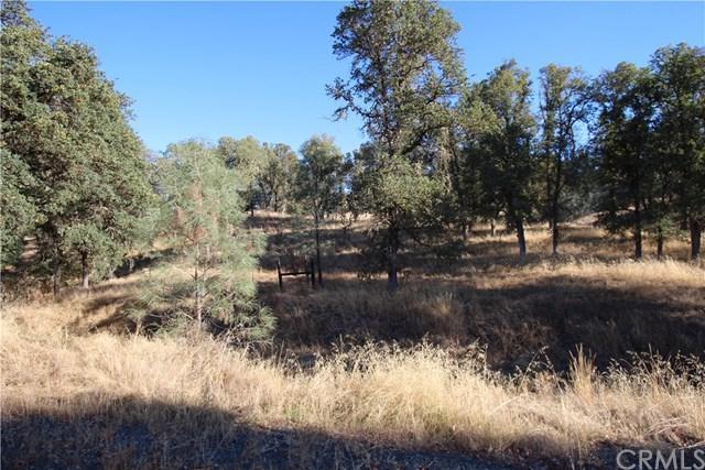 15847 Joseph Trail, Lower Lake, CA 95457 (#LC18258693) :: J1 Realty Group