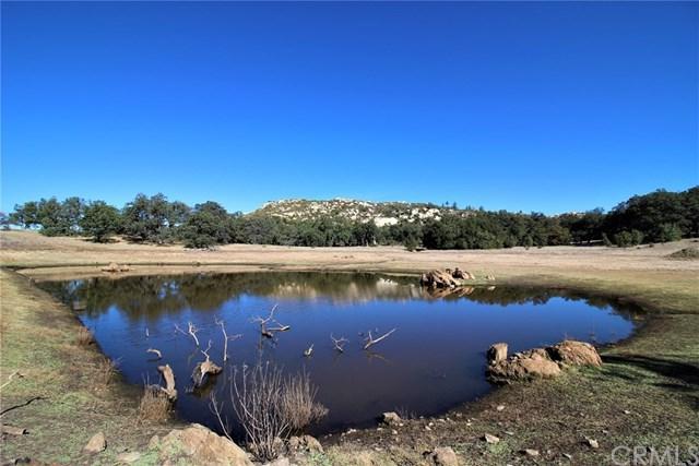 25258 Black Canyon Road, Santa Ysabel, CA 92036 (#SW18259469) :: Fred Sed Group
