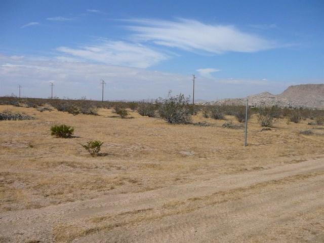0 Del Oro Road - Photo 1