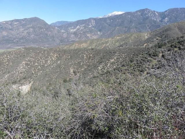 37661 Oak Glen Road, Yucaipa, CA 92399 (#501868) :: Vogler Feigen Realty