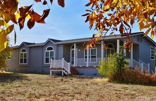 12067 Riata Road, Lower Lake, CA 95457 (#LC18263851) :: RE/MAX Masters