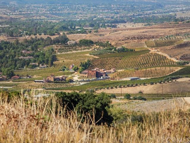 0 Camino Lorado, Temecula, CA 92592 (#SW18264381) :: Fred Sed Group