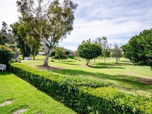 1224 San Pablo Drive, San Marcos, CA 92078 (#180061556) :: Go Gabby