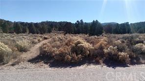 0 Lakeview, Big Bear, CA  (#PW18268148) :: Fred Sed Group