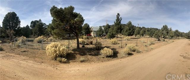 1 Pond Drive, Big Bear, CA 80113 (#OC18268511) :: Fred Sed Group