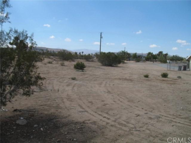3665 Warren Vista Avenue, Yucca Valley, CA 92284 (#EV18270455) :: RE/MAX Masters