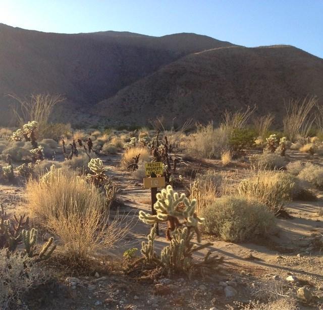 0 Anza Park Trail, Borrego Springs, CA 92004 (#180062652) :: Go Gabby