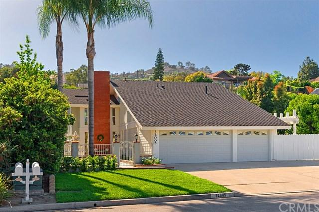 32005 Avenida Evita, San Juan Capistrano, CA 92675 (#OC18270762) :: Scott J. Miller Team/RE/MAX Fine Homes