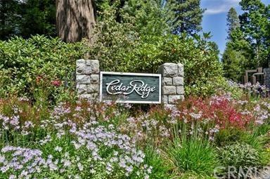 211 Cedar Ridge Drive, Lake Arrowhead, CA 92352 (#EV18271679) :: Go Gabby