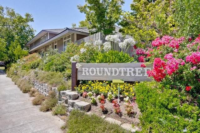 21090 White Fir Court, Cupertino, CA 95014 (#ML81731130) :: Fred Sed Group