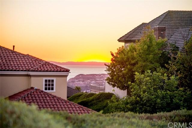 27642 Dungarvin Lane, San Juan Capistrano, CA 92675 (#OC18263204) :: Berkshire Hathaway Home Services California Properties