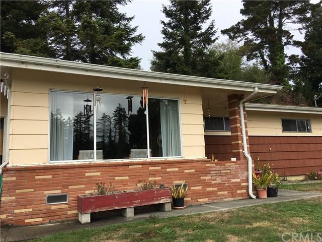 247 Newell Drive, Fortuna, CA 95540 (#LG18274135) :: Group 46:10 Central Coast