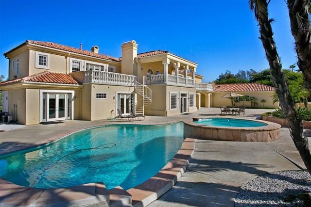 17472 Circa Del Sur, Rancho Santa Fe, CA 92067 (#180063704) :: Go Gabby