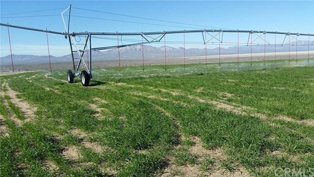 44550 Doctrine Road, Newberry Springs, CA 92365 (#PW18276159) :: Kim Meeker Realty Group
