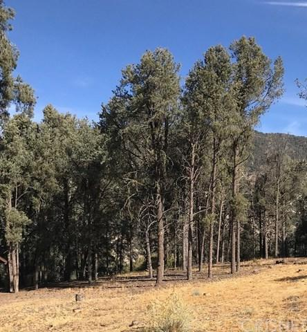 13913 Yellowstone Drive, Pine Mountain Club, CA 93225 (#SR18276355) :: RE/MAX Parkside Real Estate