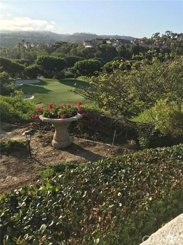 19 Wightman Court, Dana Point, CA 92629 (#218032018DA) :: Berkshire Hathaway Home Services California Properties