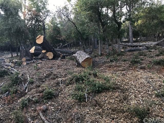 3607 Pine Terrace Drive, Kelseyville, CA 95451 (#LC18276742) :: Kim Meeker Realty Group