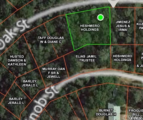 7022 Black Oak Street, Nice, CA 95464 (#LC18277399) :: Mainstreet Realtors®