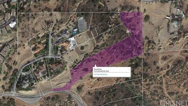 6 Woolsey Canyon Road, West Hills, CA 91304 (#SR18277896) :: Brad Feldman Group