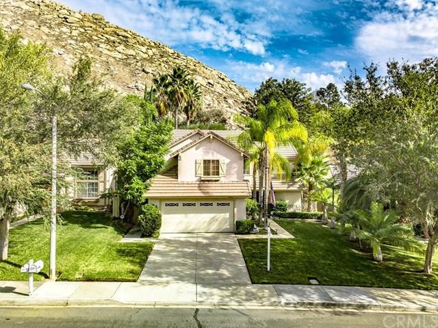 10052 Mallow Drive, Riverside, CA 92557 (#IV18273033) :: Brad Feldman Group