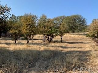 3057 Shasta Road, Clearlake Oaks, CA 95423 (#LC18278880) :: Fred Sed Group