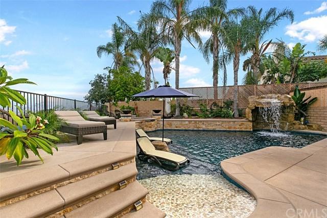25225 Perch Drive, Dana Point, CA 92629 (#OC18277533) :: Scott J. Miller Team/ Coldwell Banker Residential Brokerage