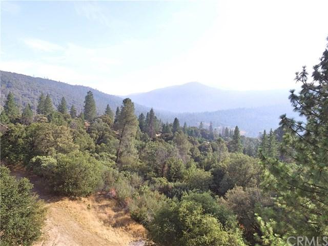 0-39.1 AC Allen Road, Oakhurst, CA 93644 (#FR18284565) :: Fred Sed Group