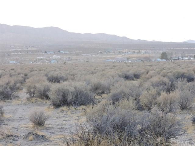 0 Alamo Avenue, Lucerne Valley, CA 92356 (#IV18285421) :: Fred Sed Group
