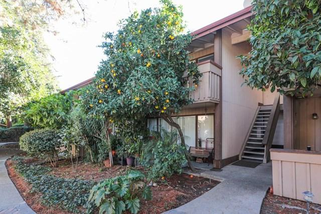 150 Saratoga Avenue #368, Santa Clara, CA 95051 (#ML81732657) :: Fred Sed Group